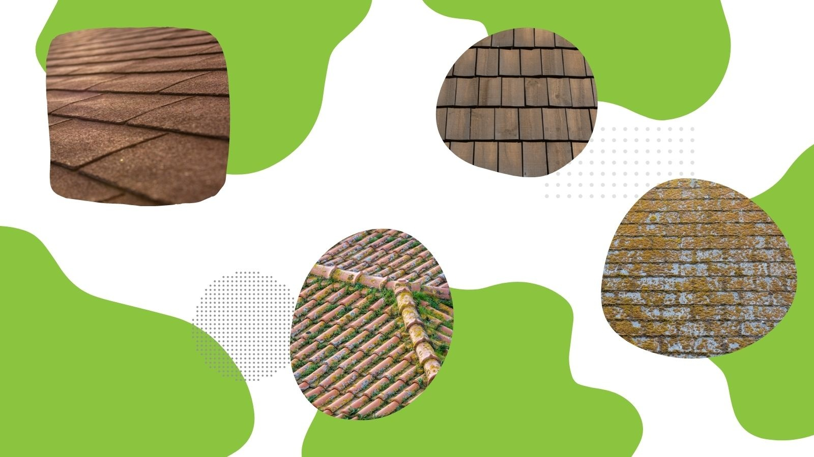 How to Prevent and Treat Roof Mildew and Staining