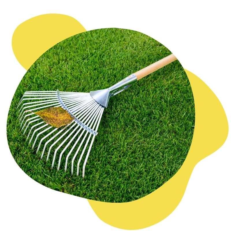 Spring Yard Clean-Up