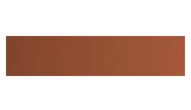 Logo Raise Lab