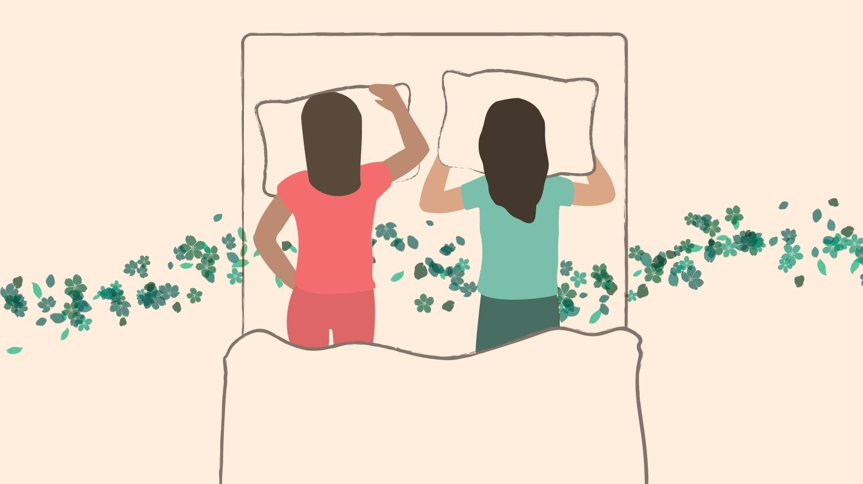 Stomach Snooze, Sleeping Position, Sleeping Positions, Best Sleeping Positions